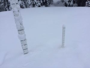 100cms of settled snow at low elevations.