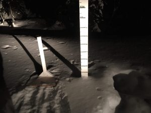 Quartz Creek Snow Plot this week.