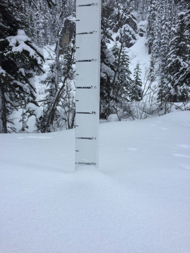 Quartz Creek snowplot on Dec 28, 2016