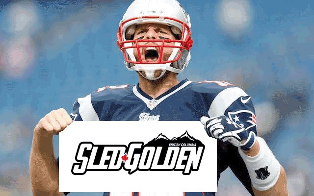 brady-sled-golden