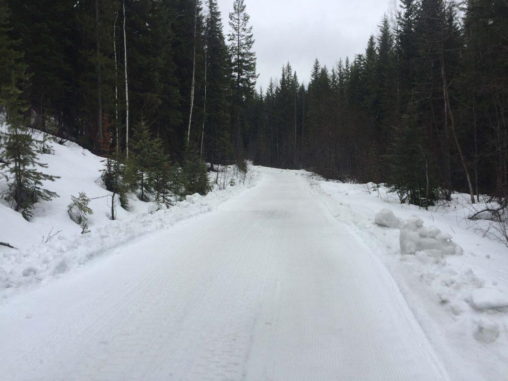 Gorman Trail down low on April 6, 1017