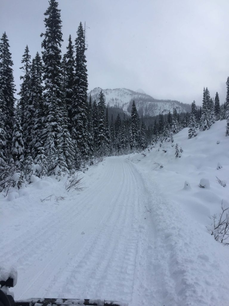 Silent Pass getting groomed on Nov 29.