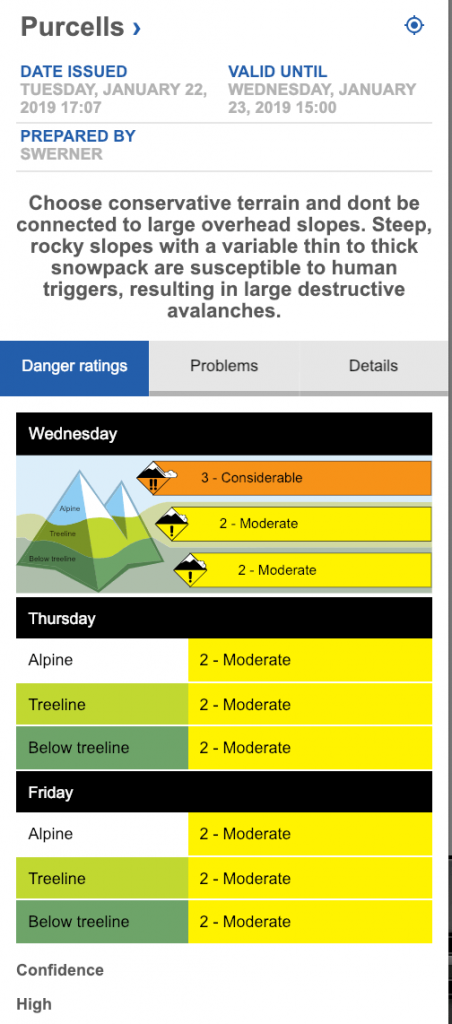 screen shot of Purcell avalanche bulletin on Jan 23