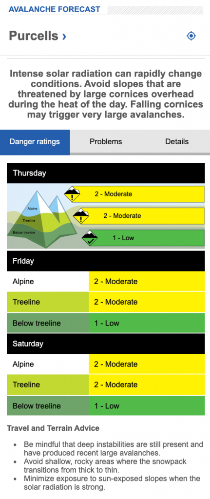 screen shot of avalanche forecast for the Purcells on Feb 26